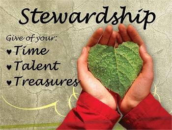 """Week 3 """"The Journey"""" Stewardship"""