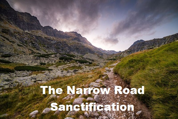 """The Narrow Road – Sanctification """"The Journey"""" Week #5"""